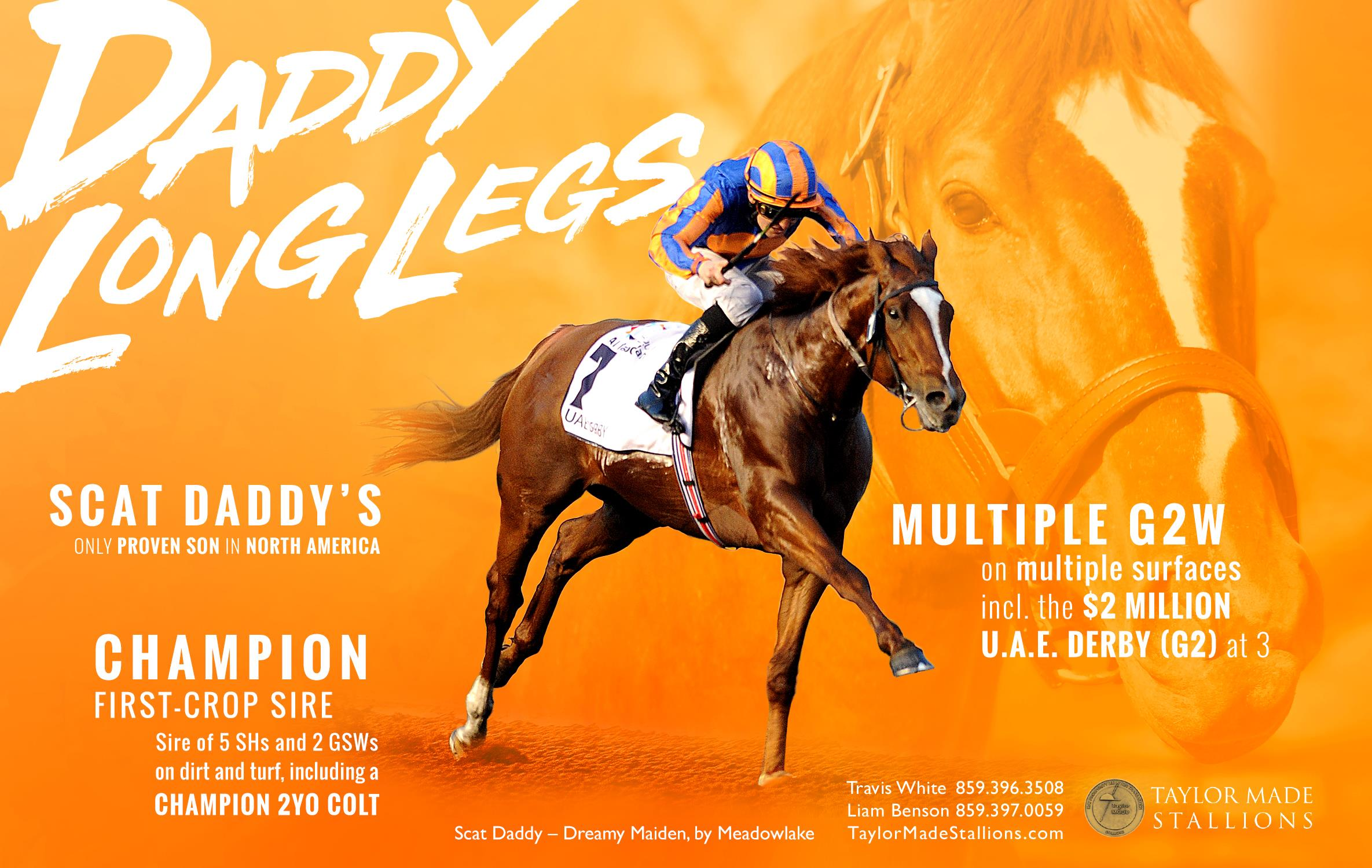 e3ce2e83 DADDY LONG LEGS - Taylor Made Stallions