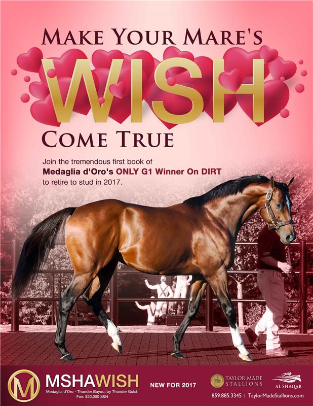 172340-Mshawish-TDN-proof