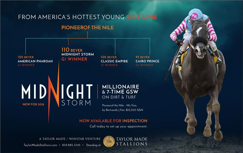 181447-MidnightStorm-half-TDN-proof