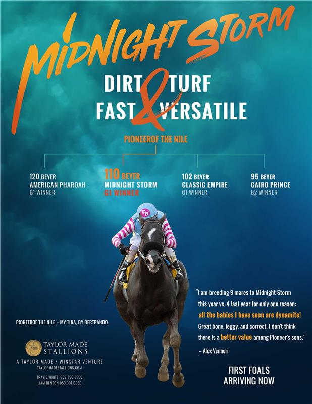 191613-MidnightStorm-TDN-FINAL
