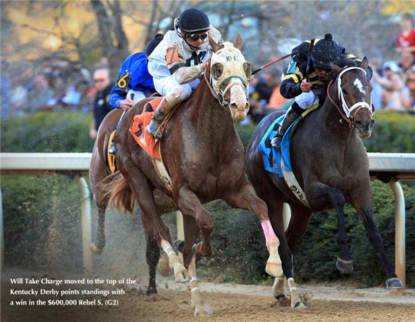 Unbridled S Song Taylor Made Stallions